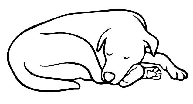 doggybw-01
